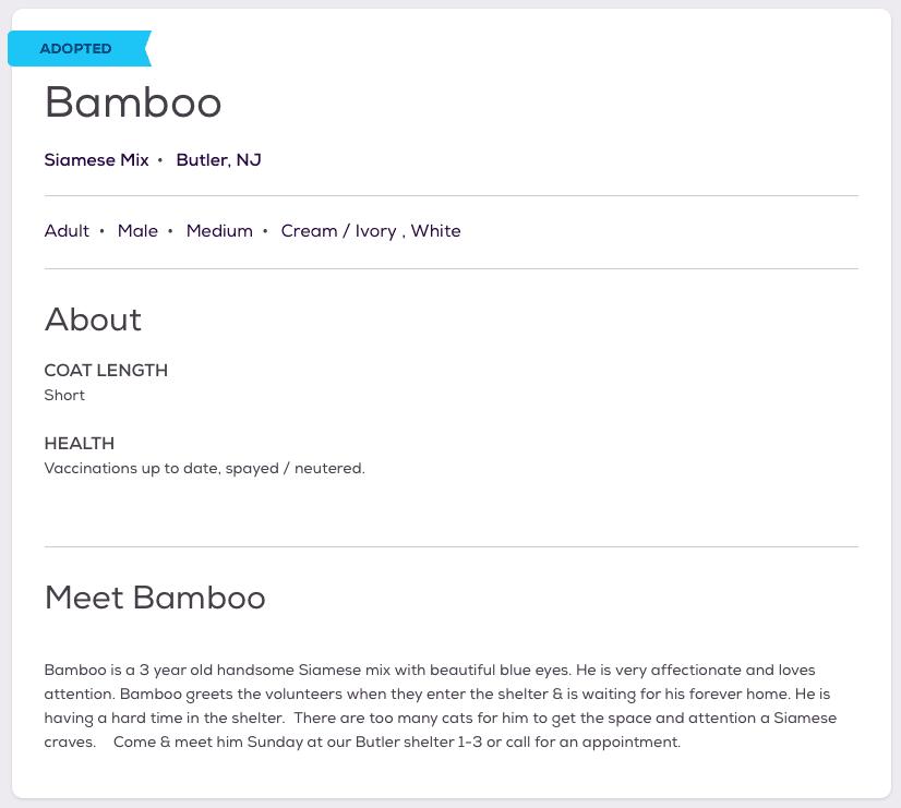 Finn Bamboo Pet Listing
