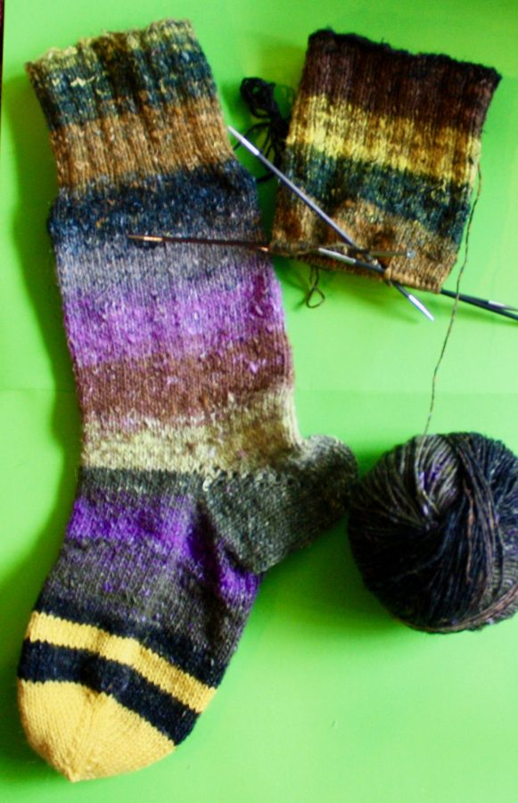 Too Busy to Post Noro Taio Sock