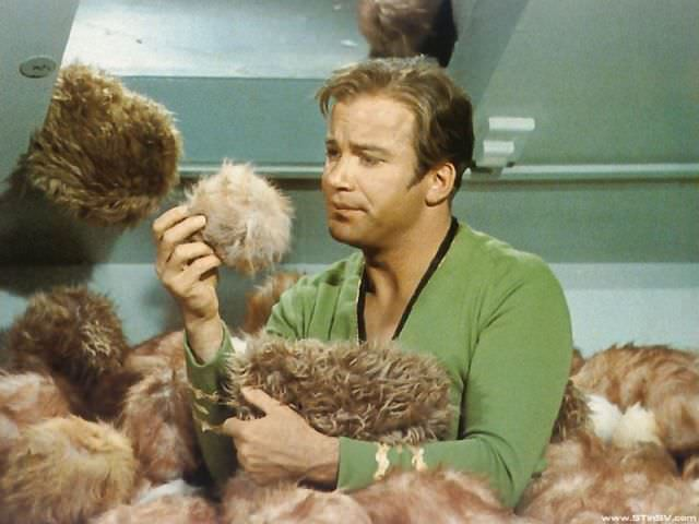Pom-Pom Bonanza Captain Kirk with Tribbles