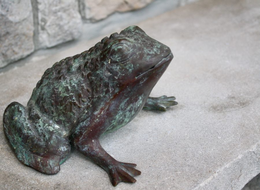 Foto February Day 11 - Garden Frog Bench