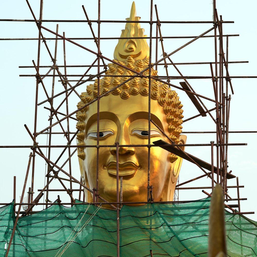 Growth and Expansion Buddha Head Unsplash