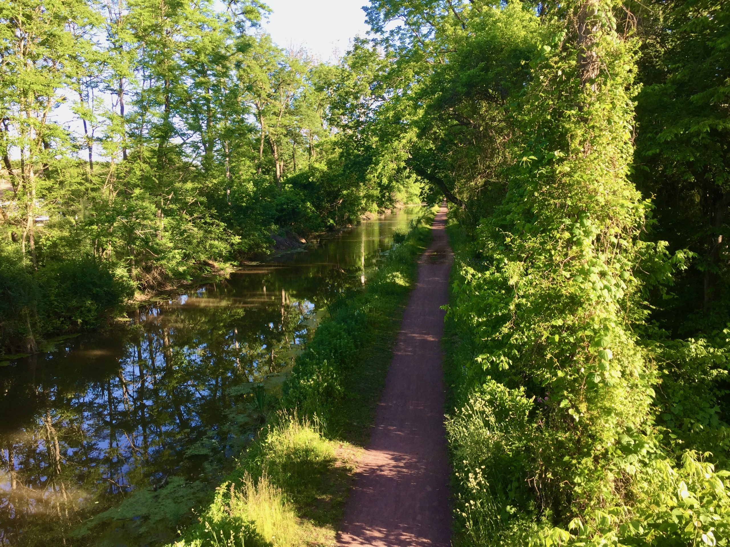 Just Beauty Today - Delaware River Canal and Towpath New Hope PA