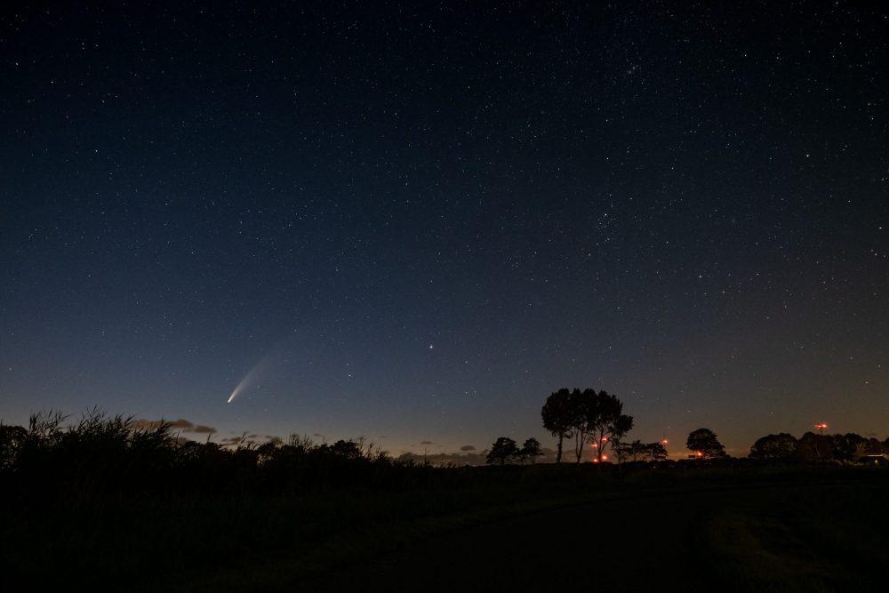 Comet Excitement - Neowise Comet