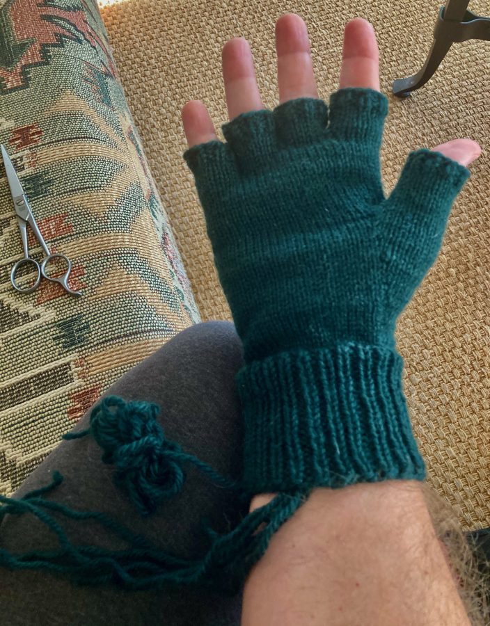 Choose Your Cable Adventure Fingerless Gloves 03-08-21 02