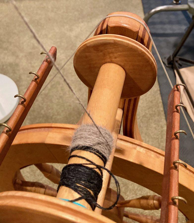 Spinning Finn 03-04-21 01