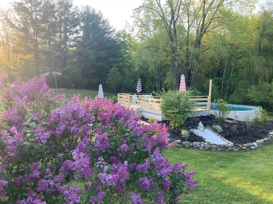 MSKR 2021 - Easton Mountain Pool and Lilac Blooming