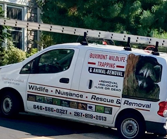The Last Thing You Want To See - Animal Renewal Van 09-01-21 01